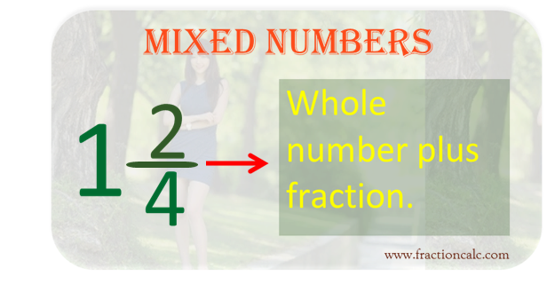 Multiplying Fractions With Whole Numbers Calculator